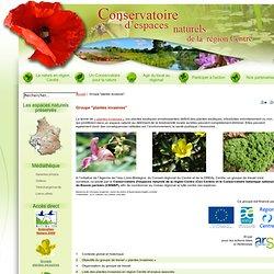 "Groupe ""plantes invasives"""