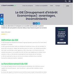 Le GIE (Groupement d'Intérêt Economique) : avantages, inconvénients