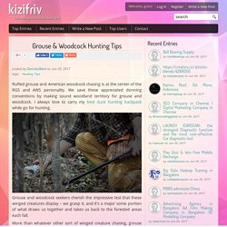 Grouse & Woodcock Hunting Tips