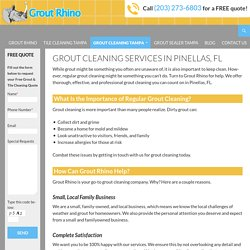 Grout Cleaning in Pinellas, FL