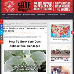 How To Grow Your Own Antibacterial Bandages.