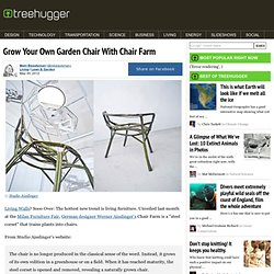 Grow Your Own Garden Chair With Chair Farm