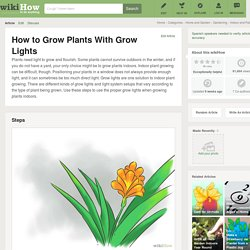 How to Grow Plants With Grow Lights - 6 Easy Steps