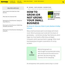 How to Grow (or Not Grow) Your Small Business - dummies