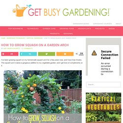 How To Grow Squash on a Garden Arch - Get Busy Gardening
