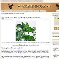 How to Grow Stevia and Make Homemade Stevia Extract