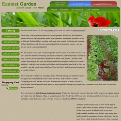 Grow The Easiest Garden on Earth