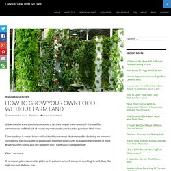 How to Grow Your Own Food Without Land