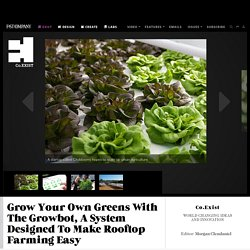 Grow Your Own Greens With The Growbot, A System Designed To Make Rooftop Farming Easy