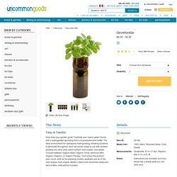 GROWBOTTLE | Indoor Herb Garden Kit, Wine Bottle Planter