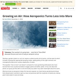 Growing on Air: How Aeroponics Turns Less into More