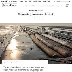 The world's growing concrete coasts - BBC Future