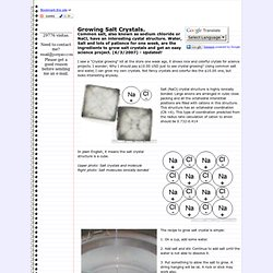 Growing Salt Crystals. - Jose Pino's Projects and Tidbits.