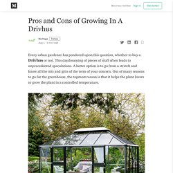 Pros and Cons of Growing In A Drivhus