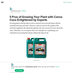 5 Pros of Growing Your Plant with Canna Coco Enlightened by Experts