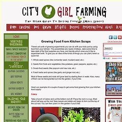 Growing Food from Kitchen Scraps