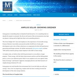 Amplus Solar: Growing Greener