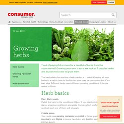 Growing herbs - Consumer NZ