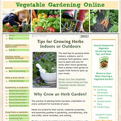 Growing Herbs, Planting Herbs, How to Grow Herbs