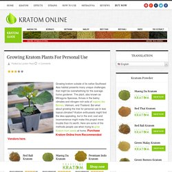 Growing Kratom Plants For Personal Use