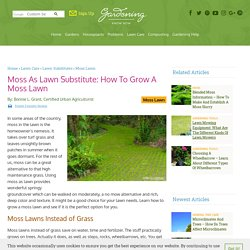 Moss Lawn Care - Growing Moss Lawns Instead Of Grass