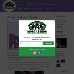 Growing Marijuana in Oregon - MOSCA SEEDS - Marijuana Seeds