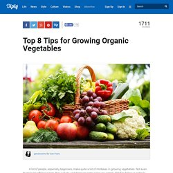 Top 8 Tips for Growing Organic Vegetables