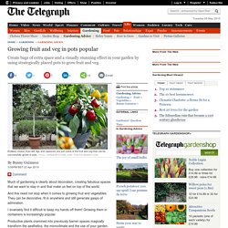 Growing fruit and veg in pots popular