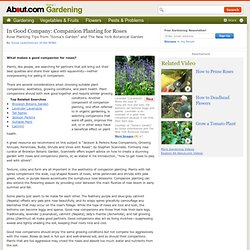 Growing Roses - Good Companion Plants for Roses