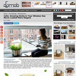 Calla: Growing Herbs in Your Window Has Never Looked More Elegant
