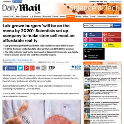 Lab-grown burgers from bovine stem cells will be on the menu by 2020