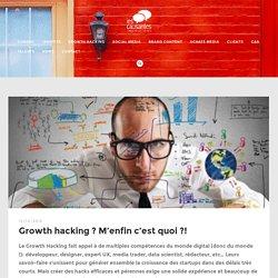 Growth hacking ? M'enfin c'est quoi ?! - 01.46.24.77.91 : Agence digitale de ...