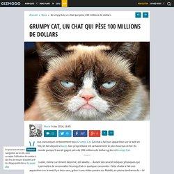 Grumpy Cat, un chat qui pèse 100 millions de dollars