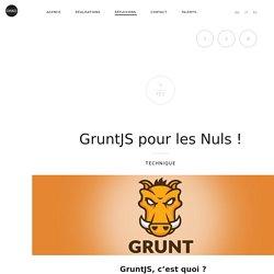 GruntJS pour les Nuls !