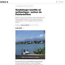 Guadeloupe insolite et authentique : autour de Pointe-à-Pitre