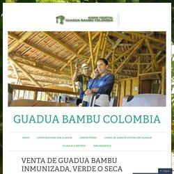 VENTA DE GUADUA BAMBU INMUNIZADA, VERDE O SECA – GUADUA BAMBU COLOMBIA