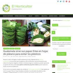 Guatemala sirve sus papas fritas en hojas de plátano para evitar los plásticos