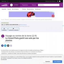 Le Grand Paris guérit ses sols par les plantes - Ép. 2/4 - Voyage au centre de la terre
