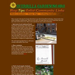 Guerrilla Gardening Tips