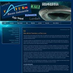 Guia de buceo en la isla de Bali