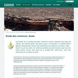 Guide des carrences: Azote