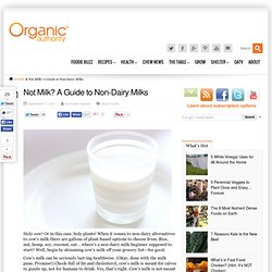 Not Milk? A Guide to Non-Dairy Milks