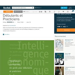 IE Guide Pour Débutants et Practiciens