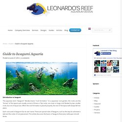 Guide to Iwagumi Aquaria - Leonardo's Reef