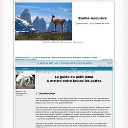 Le guide du petit lama - A mettre entre toutes les pattes