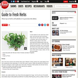 Guide to Fresh Herbs : Recipes and Cooking