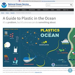 A Guide to Plastic in the Ocean