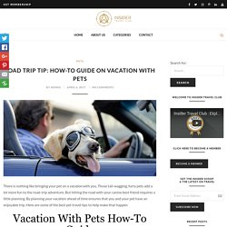 Road Trip Tip: How-to Guide on Vacation with Pets