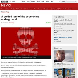 A guided tour of the cybercrime underground