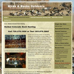 Guided Duck Hunting Colorado
